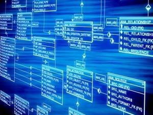 La importancia de la base de datos. Tipos de campos